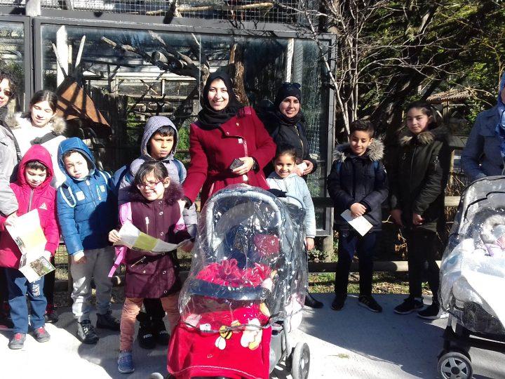 Journée au zoo pour des familles du Collectif hébergement varois