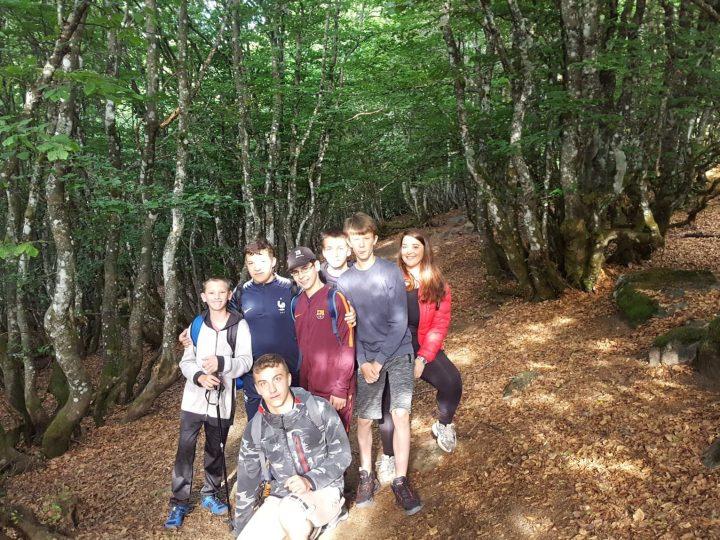 Vacances dans les Vosges pour des jeunes de Boulay